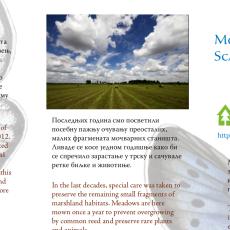 Тајни живот мочварног мравника у Србији